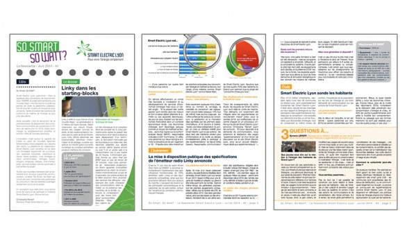 Newsletter trimestrielle <br />Smart Electric Lyon
