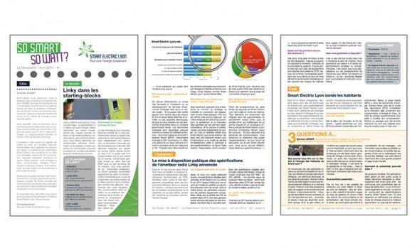 Newsletter trimestrielle Smart Electric Lyon